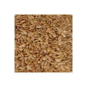 Flax_Seeds-7971
